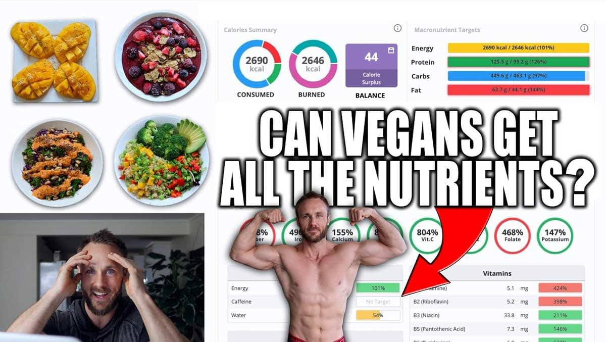 What I Eat To Stay Fit Healthy Vegan Nutrient Analysis MACROS