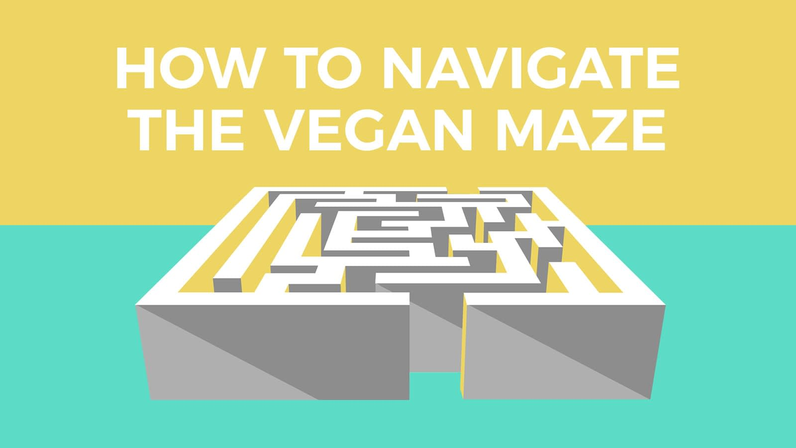 Going Vegan And Staying Vegan How To Navigate The Vegan Maze